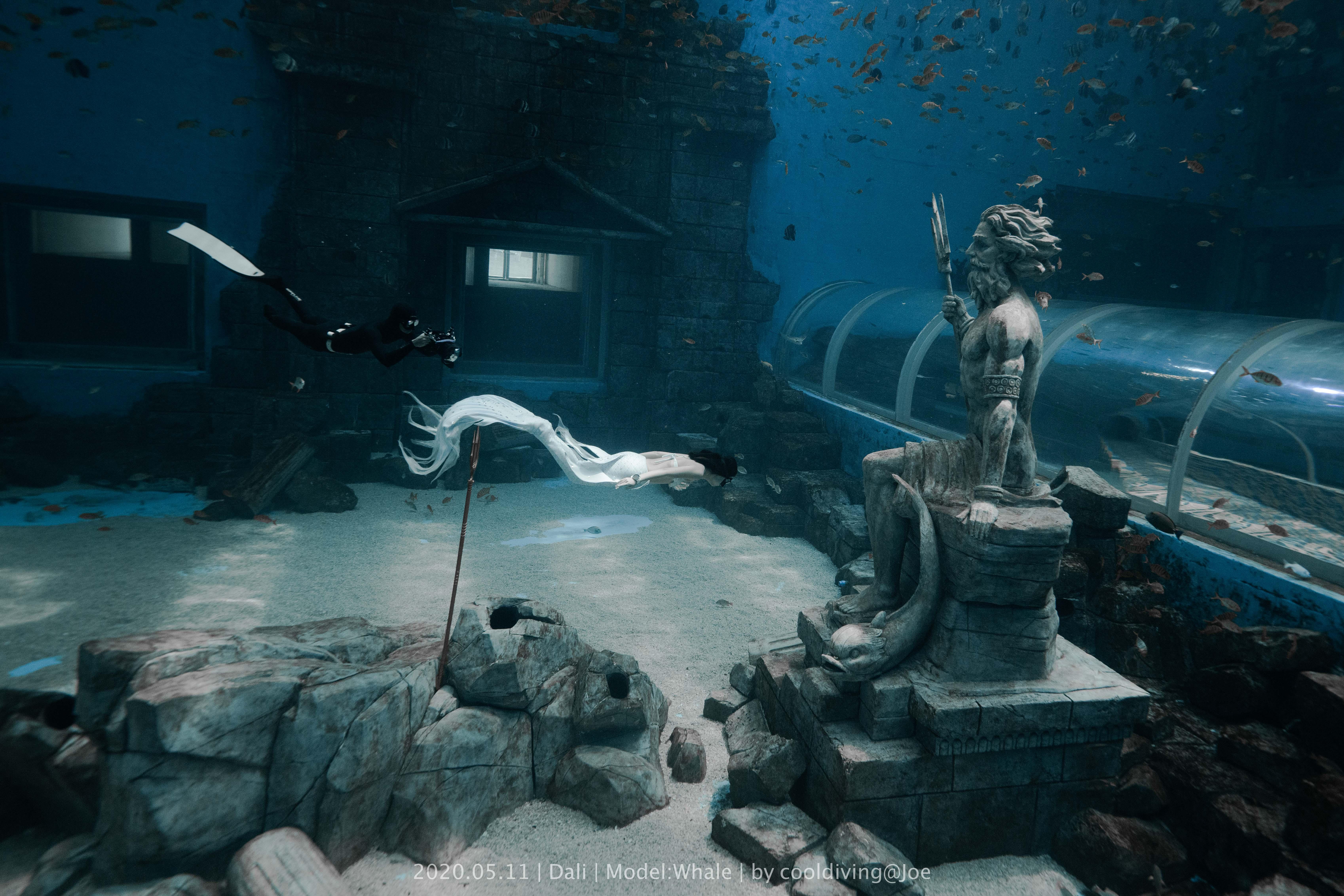 美人鱼水族馆照片