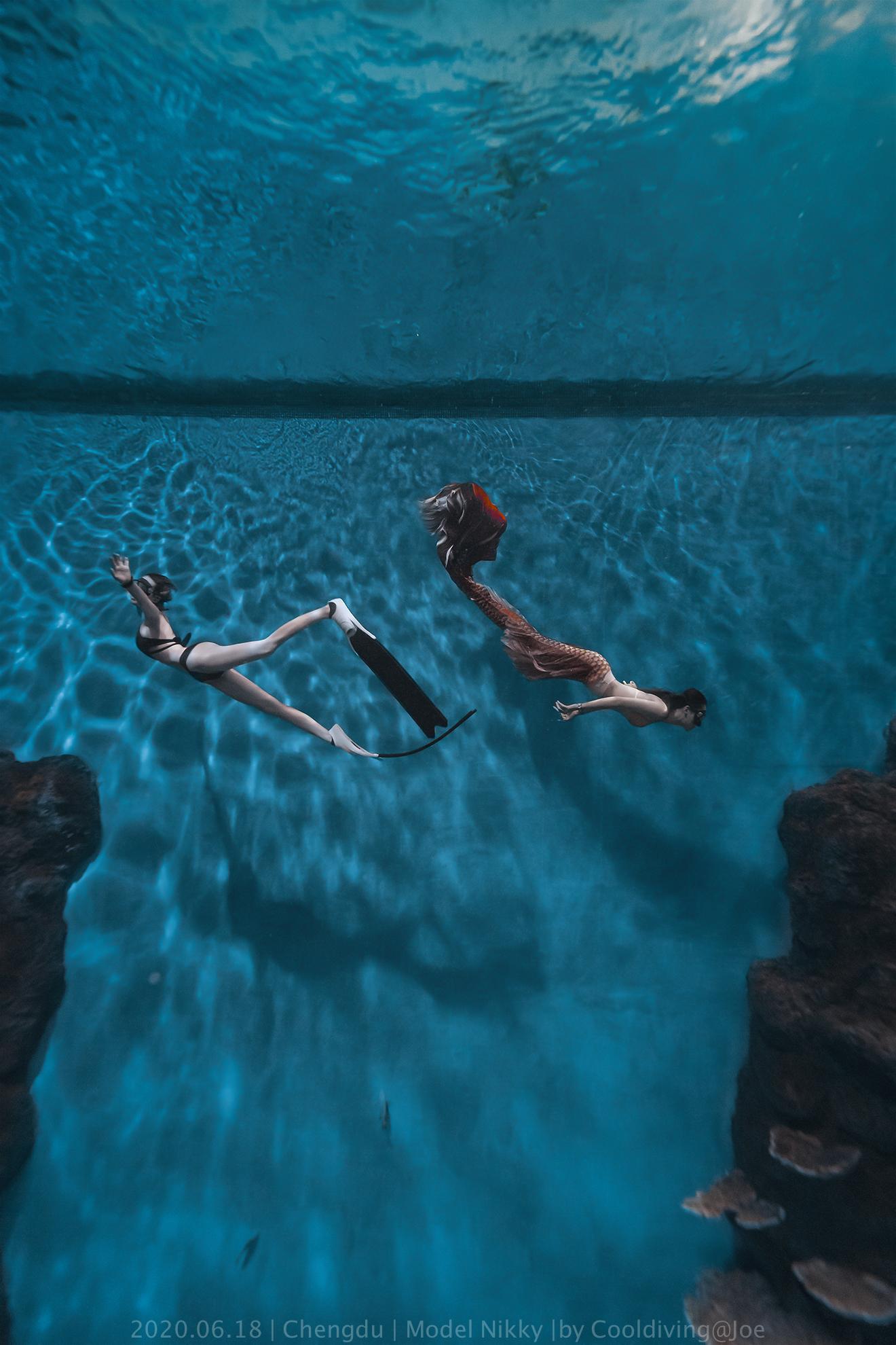 水族馆自由潜水