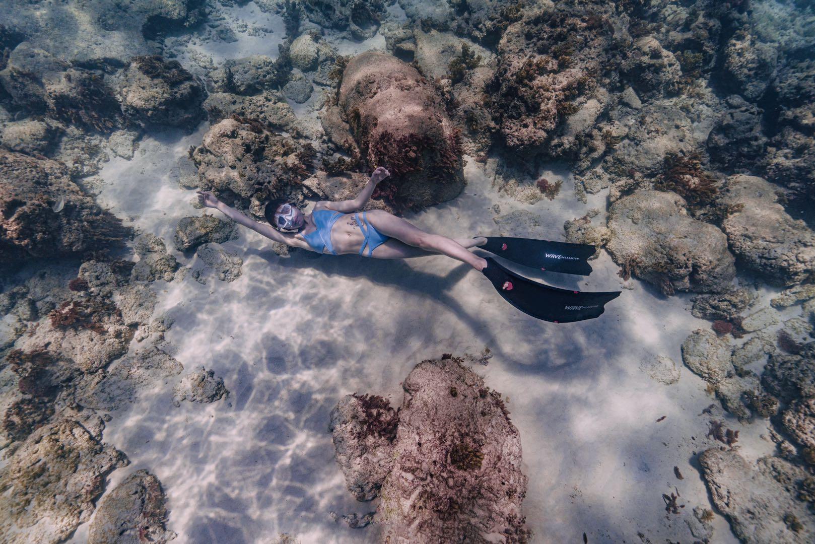 闭气潜水,珊瑚,海底世界