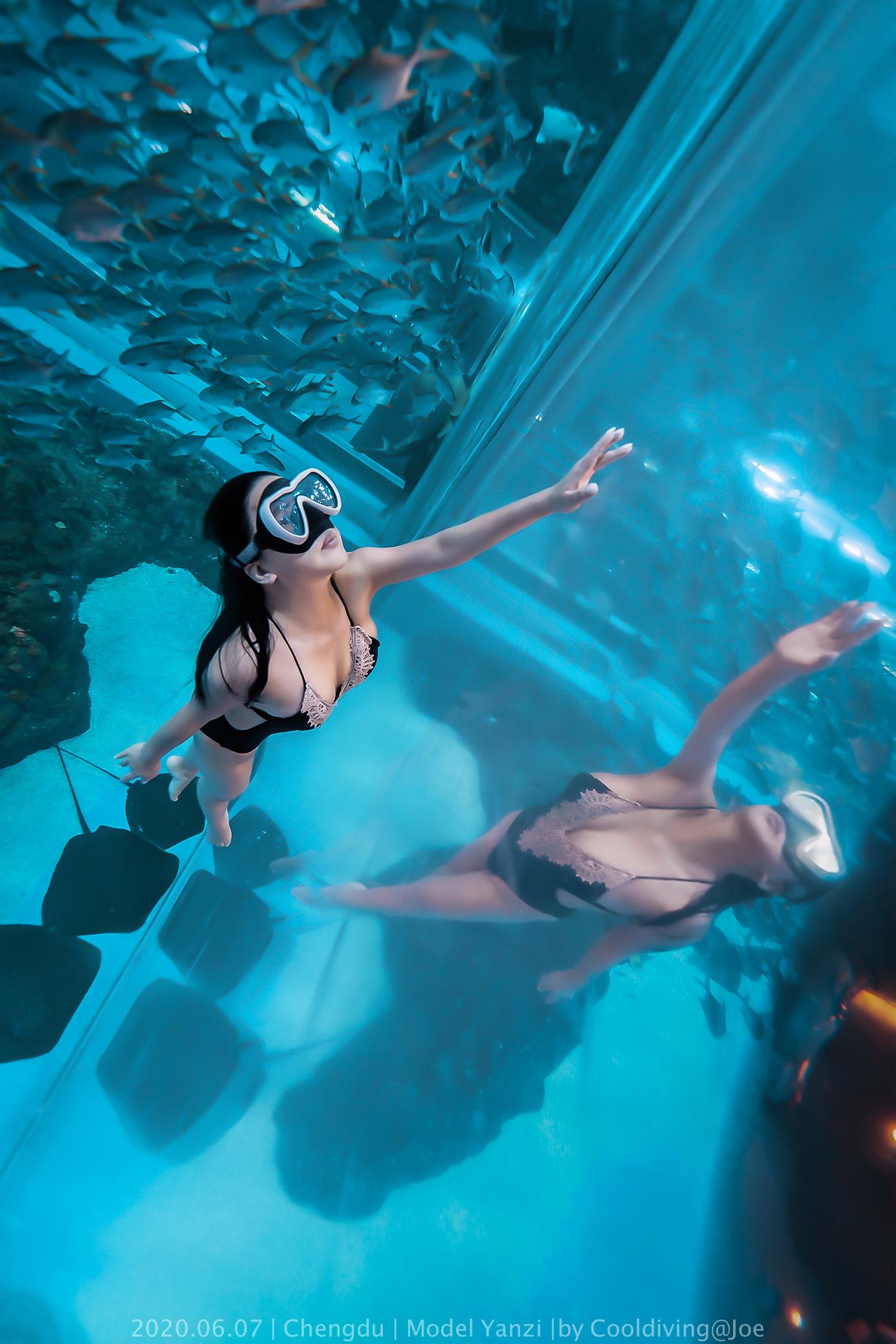 拍照,水下摄影,水下照片