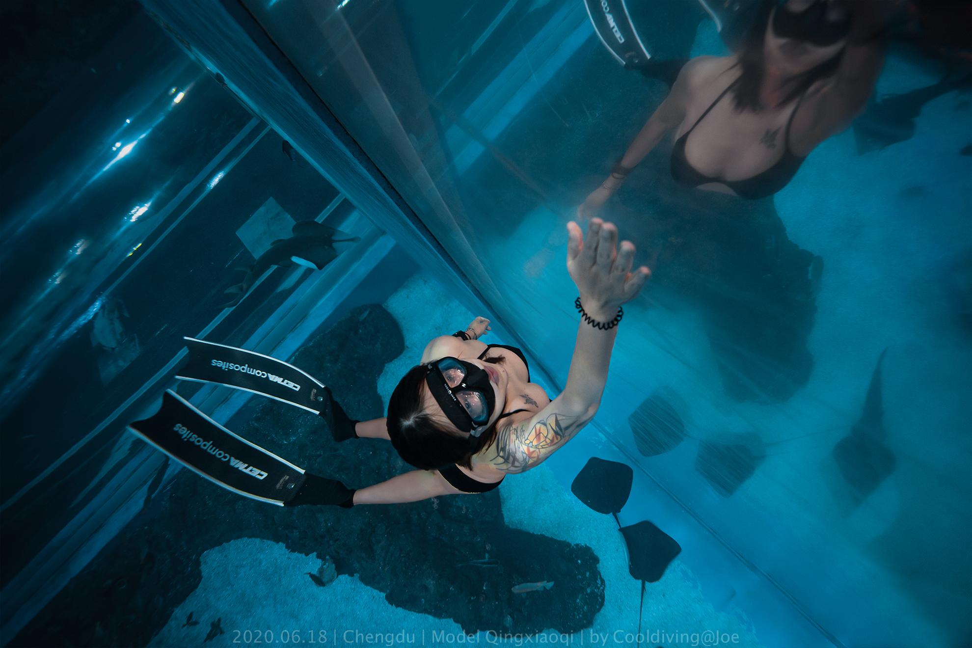 水族馆潜水训练