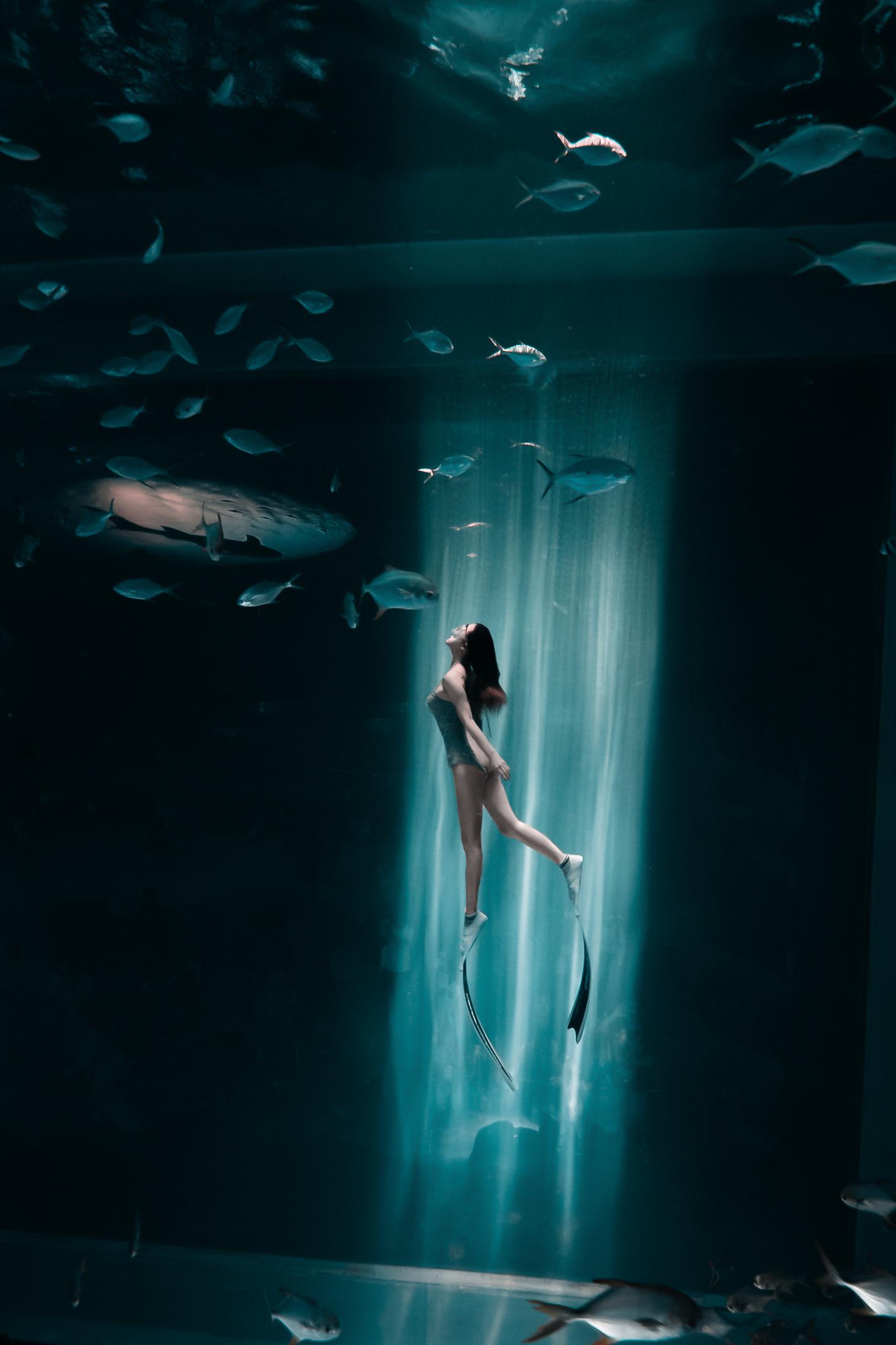 水下光影,专业拍照,海底摄影