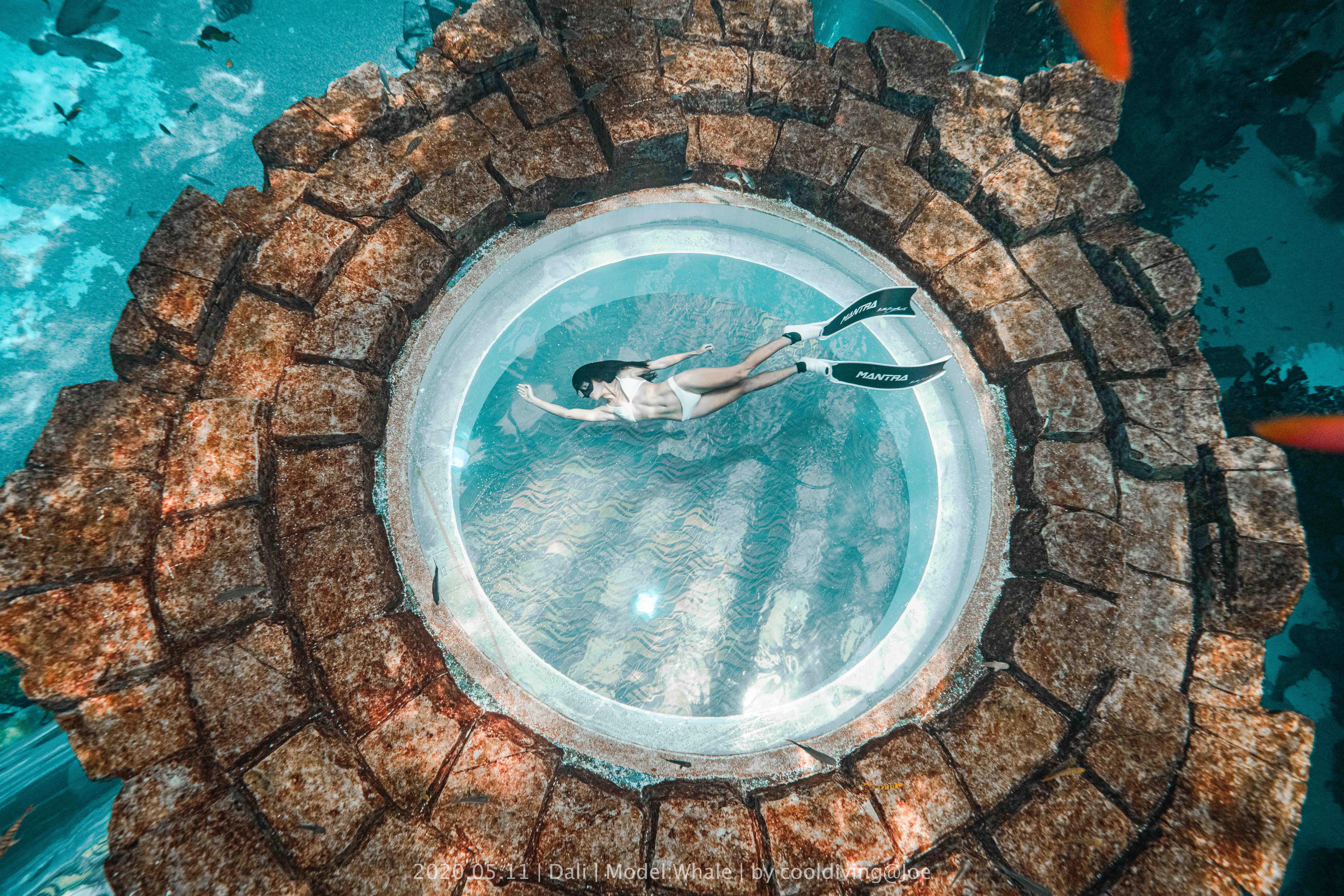 漂亮美女水族馆潜水